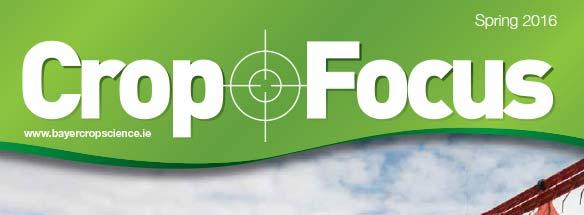Crop Focus Spring 2016